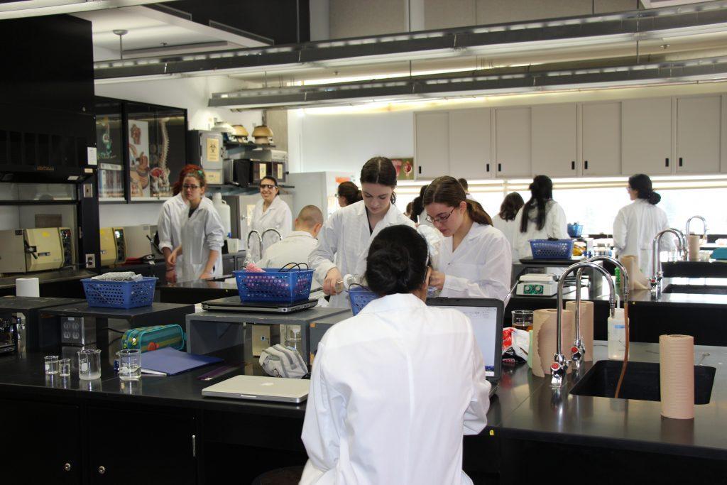 Des étudiants travaillants dans les laboratoires du programme d'étude Sciences de la nature du cégep Gérald-Godin.