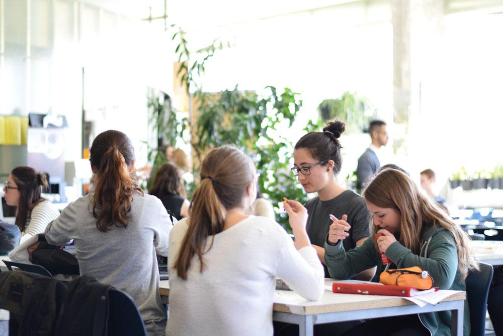 Équipe d'étudiants du programmes Sciences humaines profil Administration du cégep Gérald-Godin